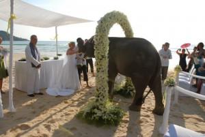 Как проходит свадьба в Тайланде
