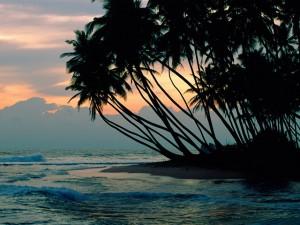 Острова - сказочное приключение