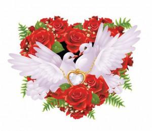 Выпуск голубей на вашей свадьбе